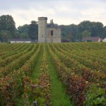 vinice zámku Clos de Vougeot